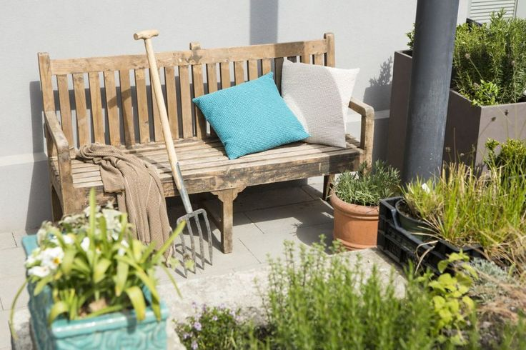 Wooden bench accesorized with a blue pillow standing in the garden  #garden  #outdoor  #flowers
