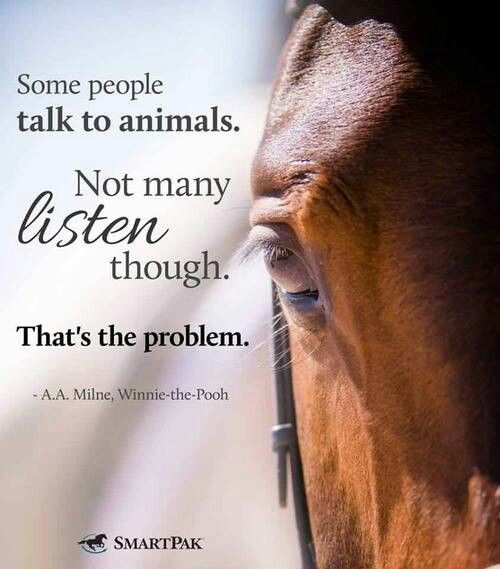 Doesn't just apply to horses and it is very true. Animals really do have a lot to say if you are patient enough to listen.