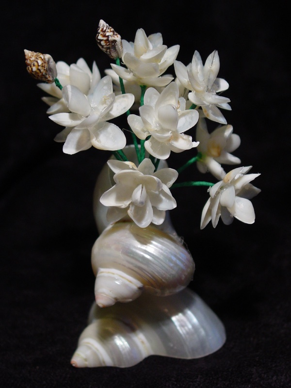 103 Best Shell Art Seashell Flowers Images On Pinterest