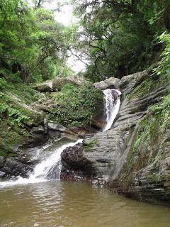 Cascada del Arroyo Los Ñoques - Tucumán.       -Casi escondida en la selva tucumana se encuentra la Cascada del Arroyo Los Ñoques, donde se puede llegar caminando luego de recorrer un sendero autoguiado de unos 200 m que parte de la Ruta Provincial 340 a 9 km de San Javier.