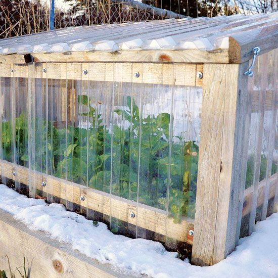 cold frames offer a simple way to protect plants from frost but take care to
