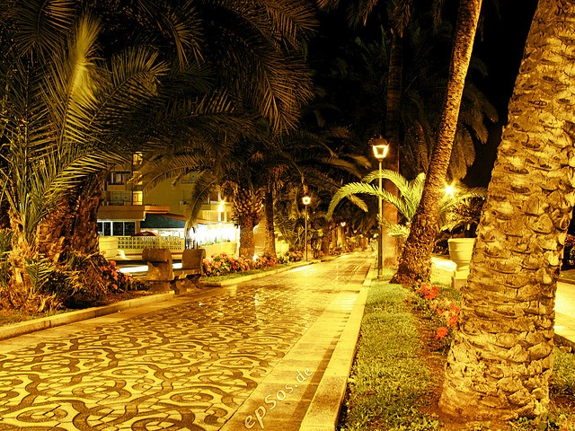 This warmly illuminated picture of city streets at night was photographed in the tropical town center of Puerto Cruz de Tenerife. The glow of lights was created with a technique known as the long exposure photograhy.    This picture was created for my  www.facebook.com/JudoCruiseMixtape JUDO CRUISE MIXTAPE