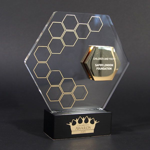 This trophy employs the use of glass and metal, in a very out-there hexagonal shape. it screams modernism and industrial undertones.