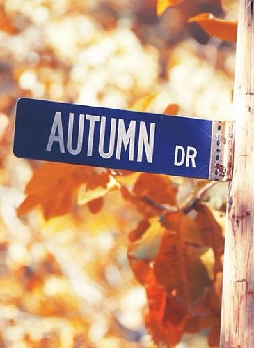 Autumn Dr.... The street sign on my corner says Autumn Leaves.....even better.