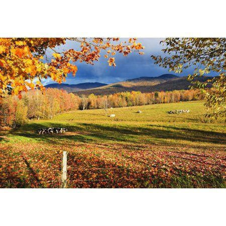Best Eastern Townships Quebec Images On Pinterest Quebec - 7 things to see and do in quebecs eastern townships