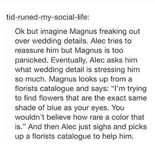 Malec's wedding and Magnus is freaking out, because he can't find flowers, with the exact same shade of blue as Alec's eyes. xD
