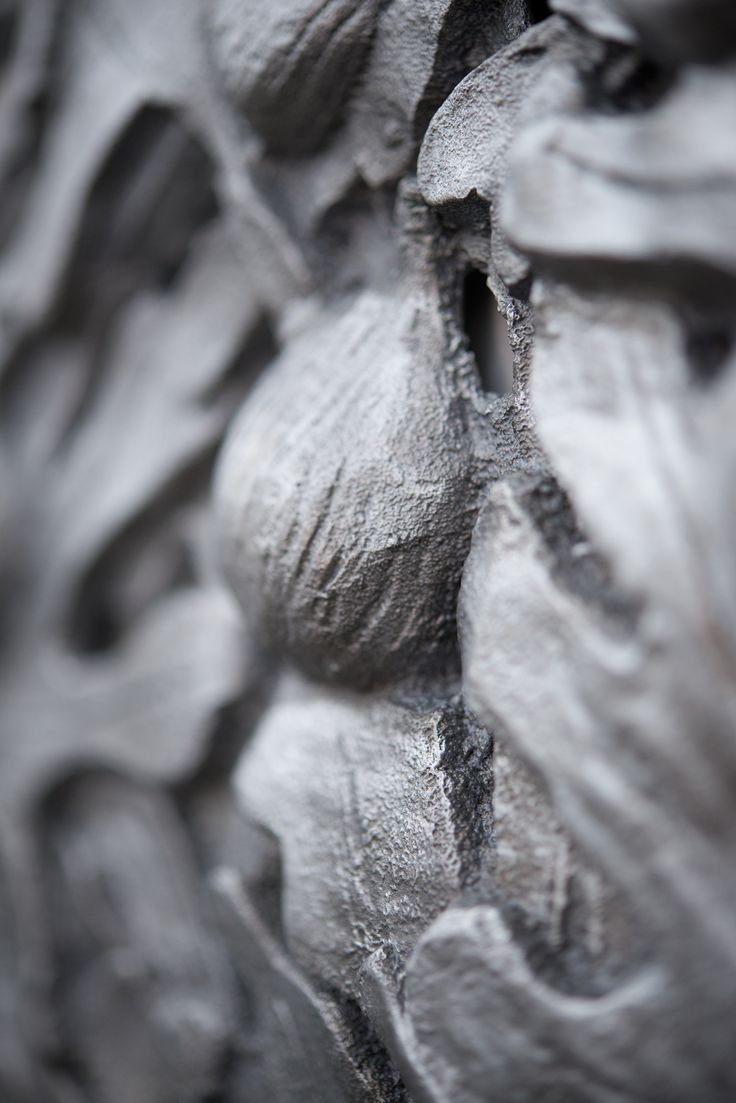 NICOLAS DESHAYES Botanique Pudique, 2013 Detail