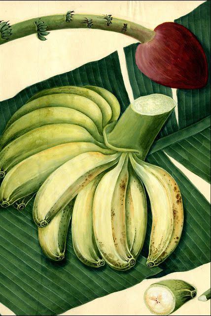 """Olímpia Reis Resque: """"Se eu soubesse cantar, cantaria a banana..."""""""