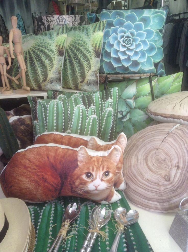 Pillows cats plants decor