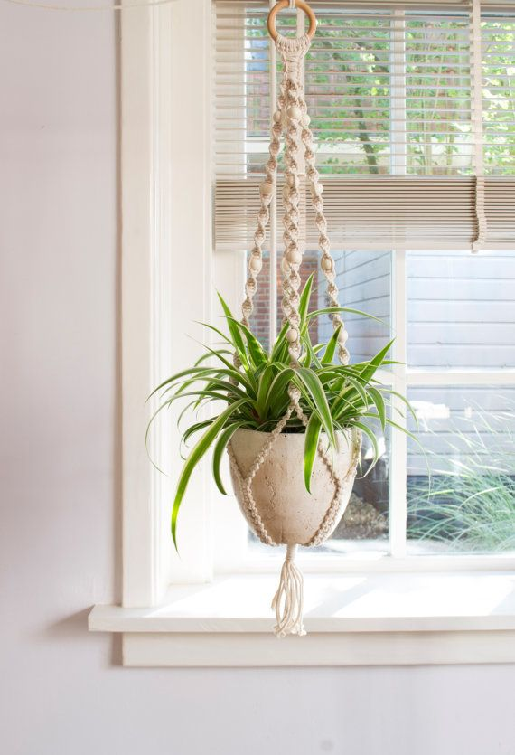 Macrame Plant Hanger / Plant Holder / Hanging door MangoAndMore
