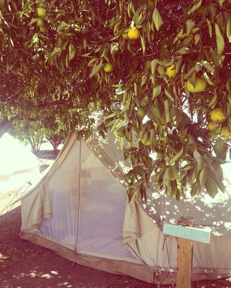 Live is better in a tipi! Tiny whale surflodge Lagos Portugal Algarve