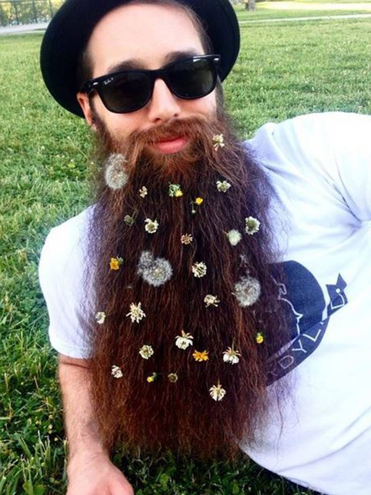 In pictures: Flower beards