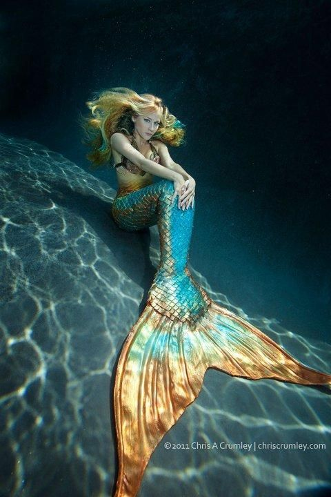 This company makes actual mermaid tails ... I wanted to be a mermaid when I was a little girl. Didn't you?