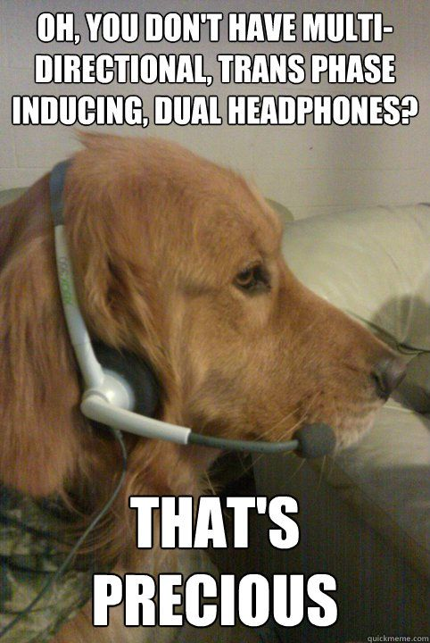 dogs on headset meme   ... inducing, dual headphones? that ...