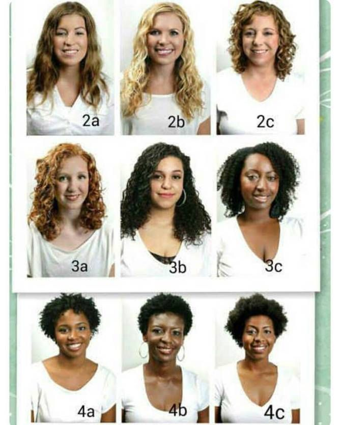 hair types chart - Google Search