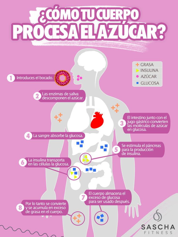 ¿Cómo se procesa el azúcar en el cuerpo?