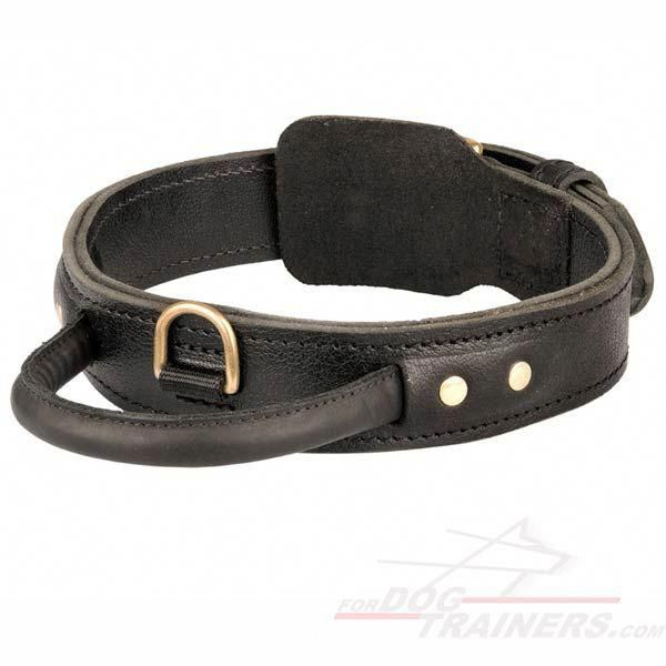 Pin On Dog Collar Products