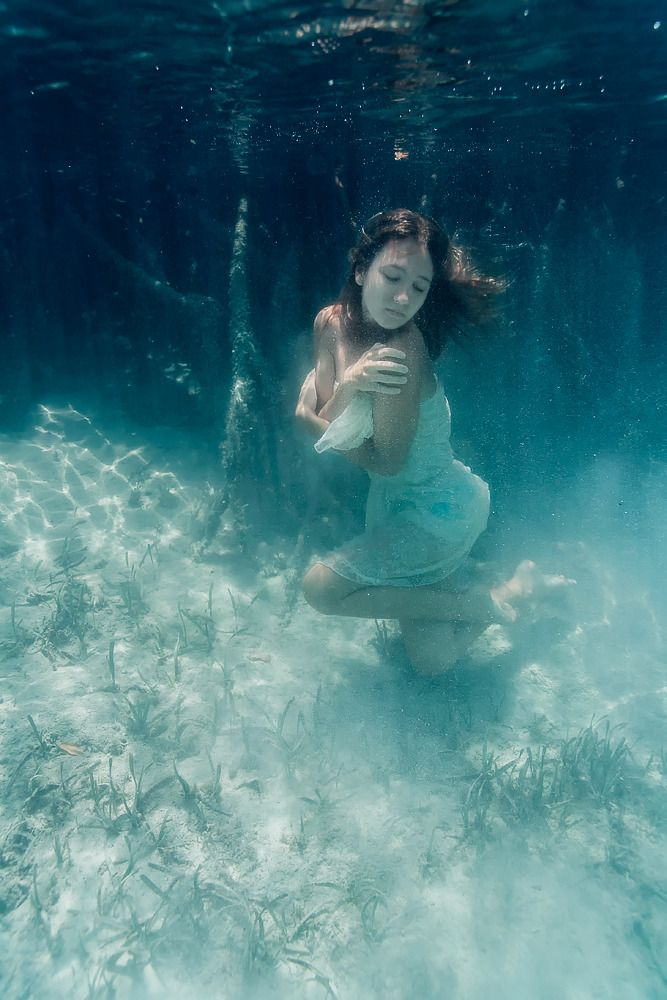 Best Underwater Photography Images On Pinterest Ideas - 34 incredible underwater photographs reveal nature best