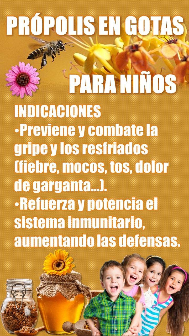 #resfriado #comun #en #para #niños #y #gripe #salud #natural #infantil #mocos #quitar #remedios #sintomas #tos #garganta #prevencion #naturales #tratamiento #fiebre #mucosidad #nasal #oidos #expectoracion #con #flemas #miel #propolis #beneficios #propoleo #equinacea #propiedades #vitamina #c #defensas #altas #bajas #subir #sistema #inmune #inmunologico #inmunitario