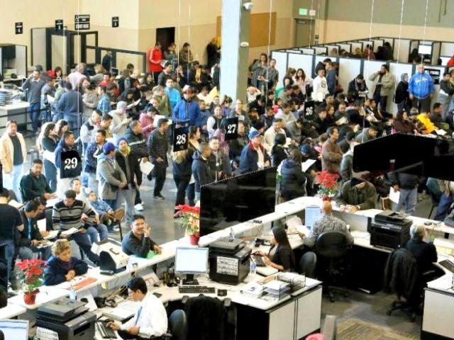 Half Million Illegal Aliens Elude Deportation in Landslide CA License Response