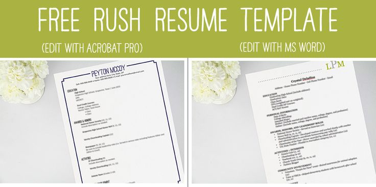 resume template 2 pages creativework247 resume templates sorority recruitment resume - Sorority Recruitment Resume Template