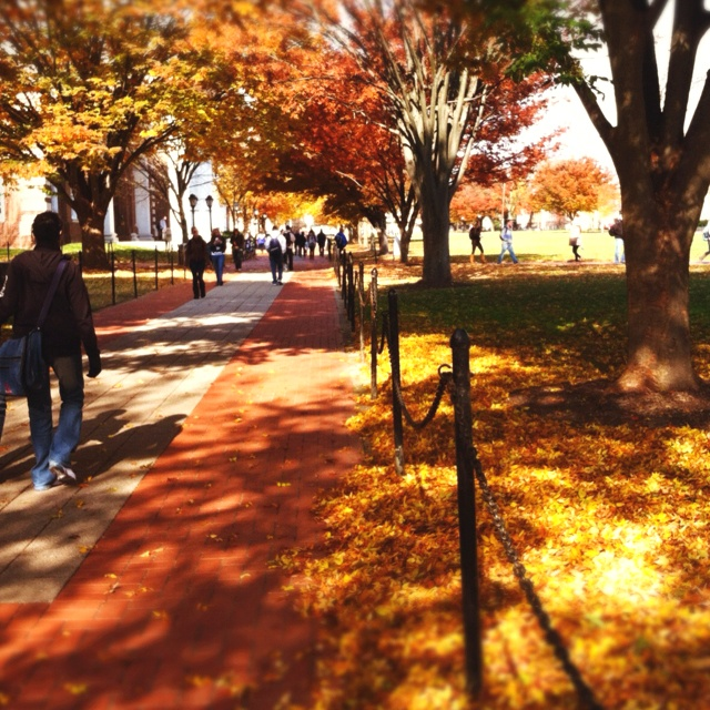 University of Delaware in the fall