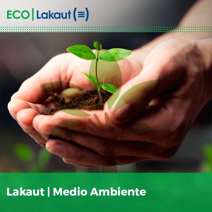 Lakaut (@lakaut)   Twitter  Cuidemos nuestro planeta, unite a la digitalización documental y convertí tu empresa en EcoFriendly.