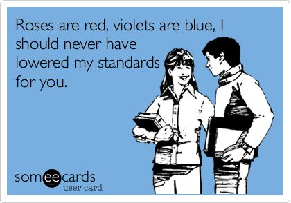 Roses are red, violets are blue, I should never have lowered my standards for you.