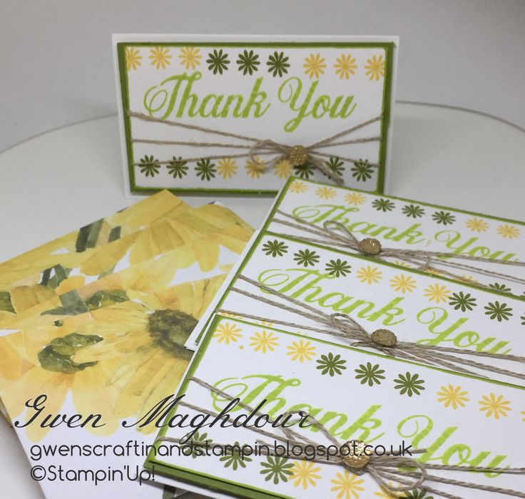 gwenscraftinandstampin Daisy Delight Thank you cards with matching envelopes