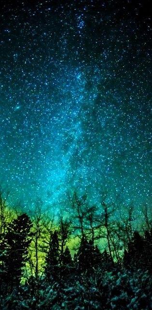 Milky Way, Cold Night in Bozeman, Montana  #TaraMedium