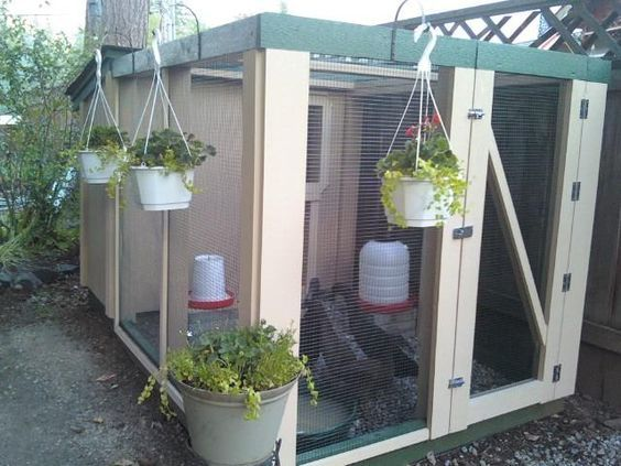 Image result for duck enclosures