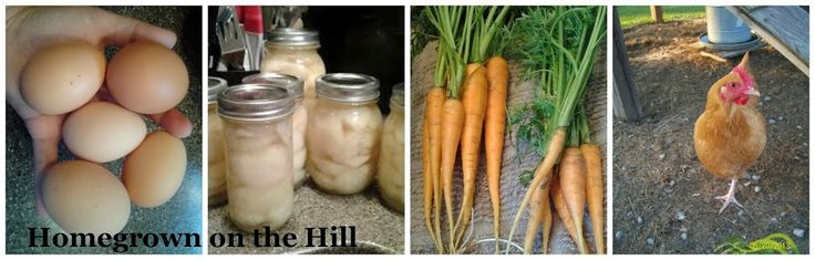 Homegrown on the Hill
