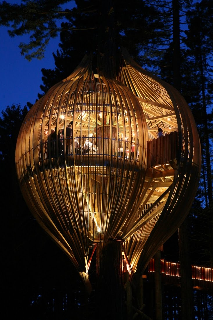 Tree Restaurant, Auckland, New Zealand.  This one is real!  http://www.pacificenvironments.co.nz/newsarticles/index_dynamic/containerNameToReplace=Middle/focusModuleID=3655/overideSkinName=newsArticle-full.tpl
