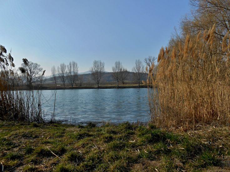 Rybník pri Trenčíne 3