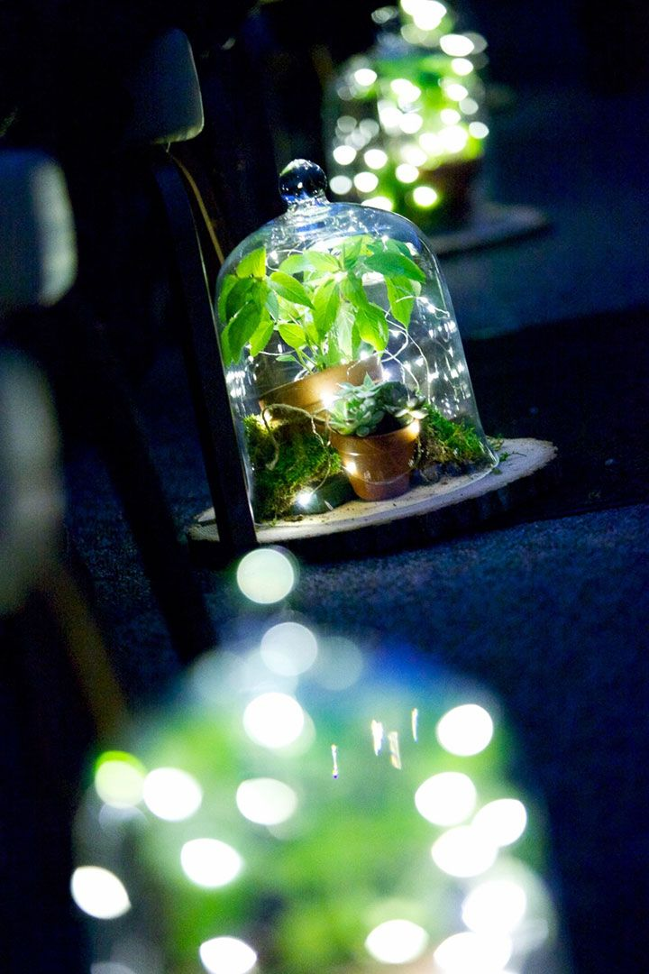 best 25 fairy lights ideas on pinterest room lights. Black Bedroom Furniture Sets. Home Design Ideas