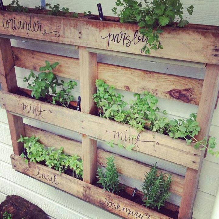 Hanging Pallet Planter    I'd make this but I can't afford the dirt or herbs, darn it!  I think plants would grow really well on the wall next to my front door.  Really like it.