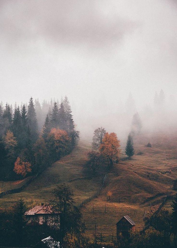 Foggy Fall views #fog #fall #photography #peace #tranquility