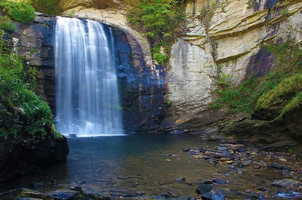 Pisgah National Forest, North Carolina w/ lots of trails for hiking & backpacking including 4 long distance trails (up to 30 miles), Camp sites avail.