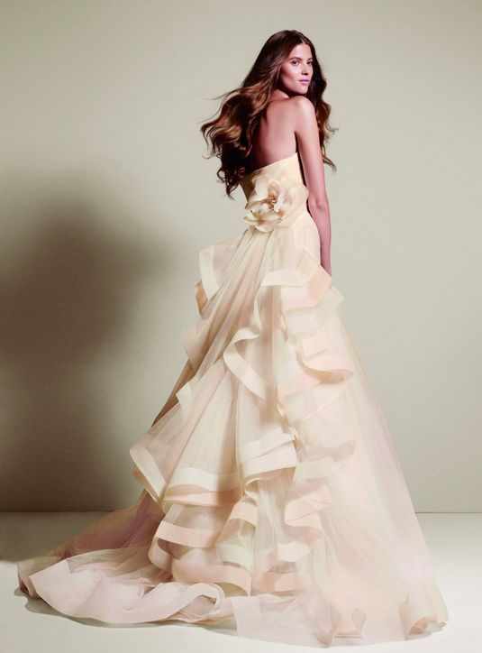 Pink Wedding Dresses David S Bridal : Vera wang blush wedding dress davids bridal check out everything else