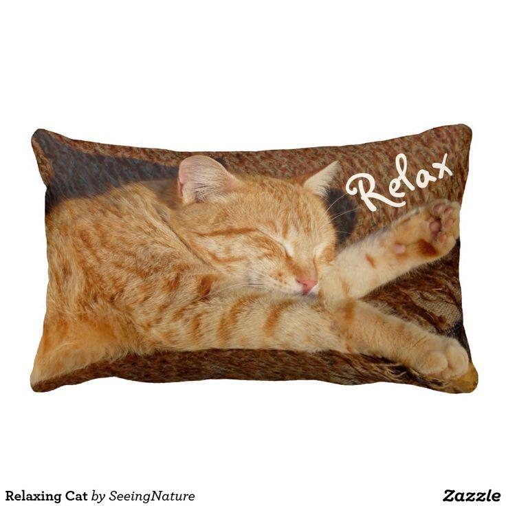 Relaxing Cat Pillows