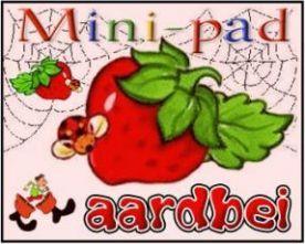 Mini-pad Aardbei :: mini-pad-aardbei.yurls.net