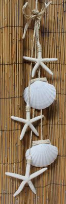 Irish Scallop and White Star Garland - California Seashell Company Retail