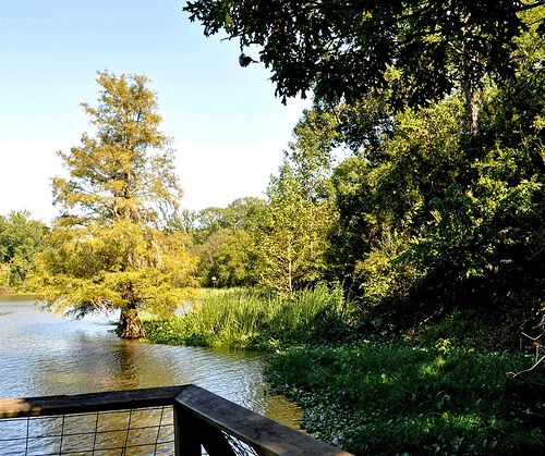 Womack Hill, AL - Choctaw National Wildlife Refuge | by RuralSWAlabama