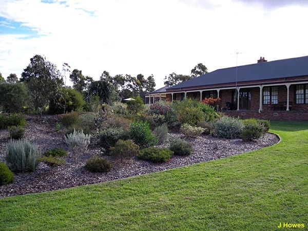 Australian Native Garden Inspiration - A close up of the raised bed - Peter and Margaret Olde's garden, 'Silky Oaks', Oakdale, New South Wales.