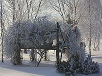 Winter in #Chatham-Kent #Ontario