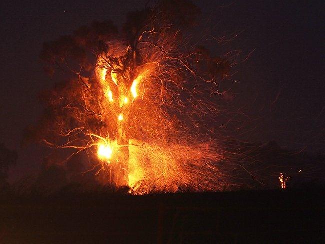 bushfire outside of Bungendore NSW