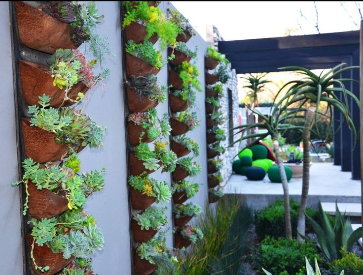 Recycled old conveyor belts and buckets from an old bread factory, used as vertical planters for succulents on the wall.
