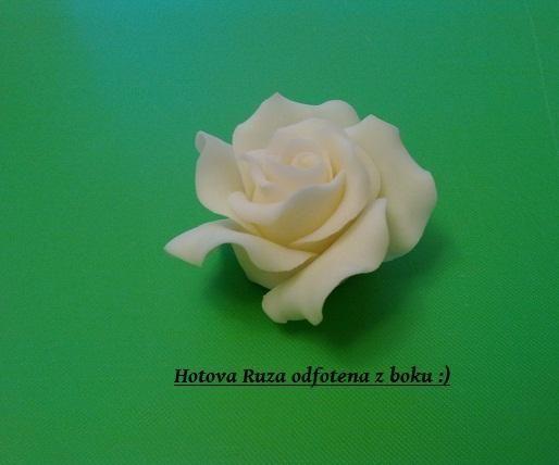 Ruza :) dufam ze to pomoze....niekomu :D , Kvety, fotopostupy | Tortyodmamy.sk