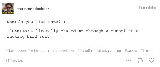 And what T'Challa should have said back. | 19 Times Marvel Fans Were Really Damn Funny On Tumblr