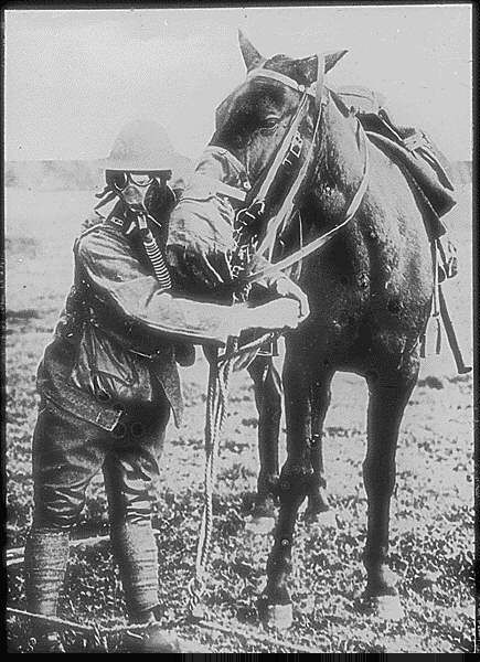 Gas masks for man and horse demonstrated by American soldier.